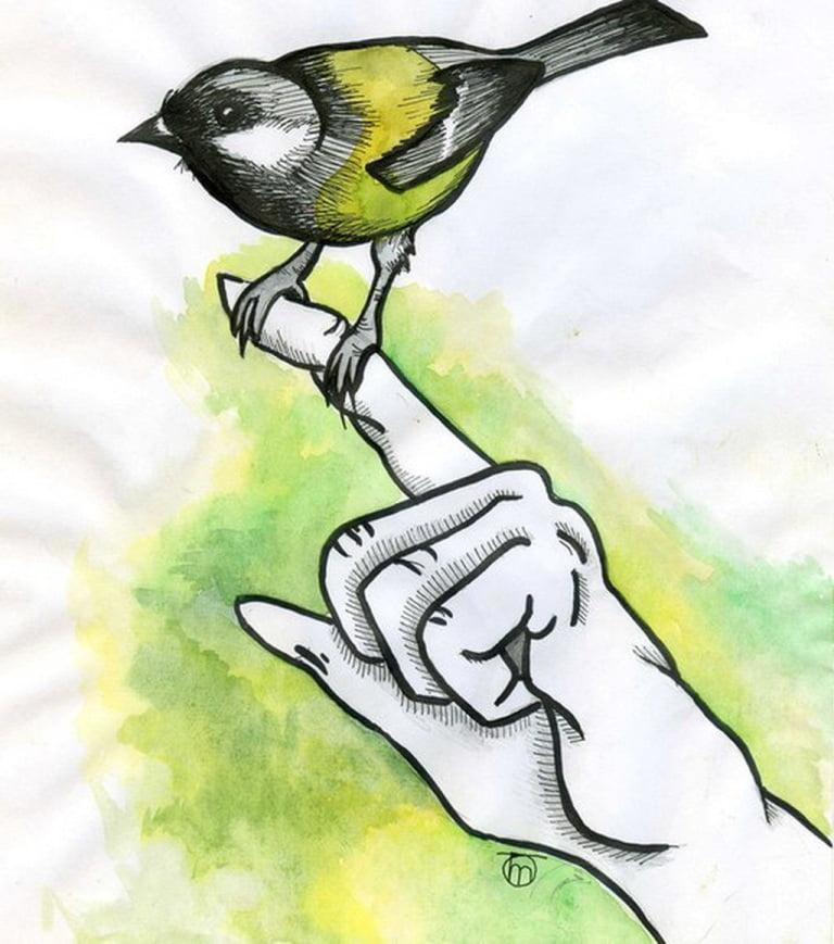 Александра Табанюк_илюстратор_рисонок_нарисовать правильно_советы_илюстрация (3)